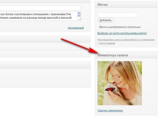 Миниатюра WordPress