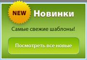 Купить новые шаблоны wordpress
